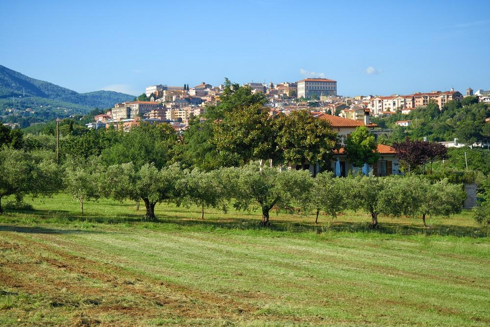 Velletri, Castelli Romani