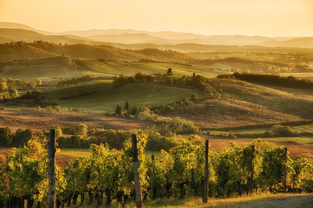 La Strada del Vino e dell'olio del Chianti Classico