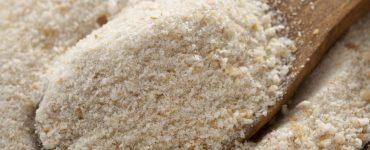 Mollica di San Giuseppe