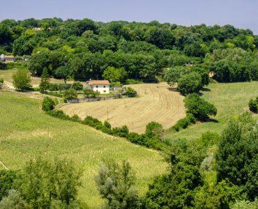 Strada dei vini del Cantico