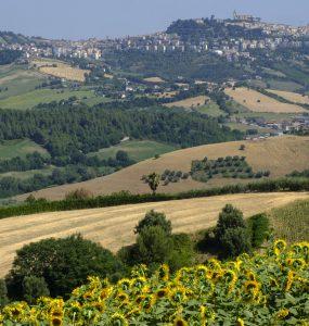 Monterubbiano (Fermo, Marche)
